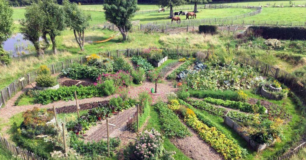 La permaculture et le sol