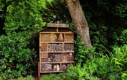 Une magnifique maison à insecte