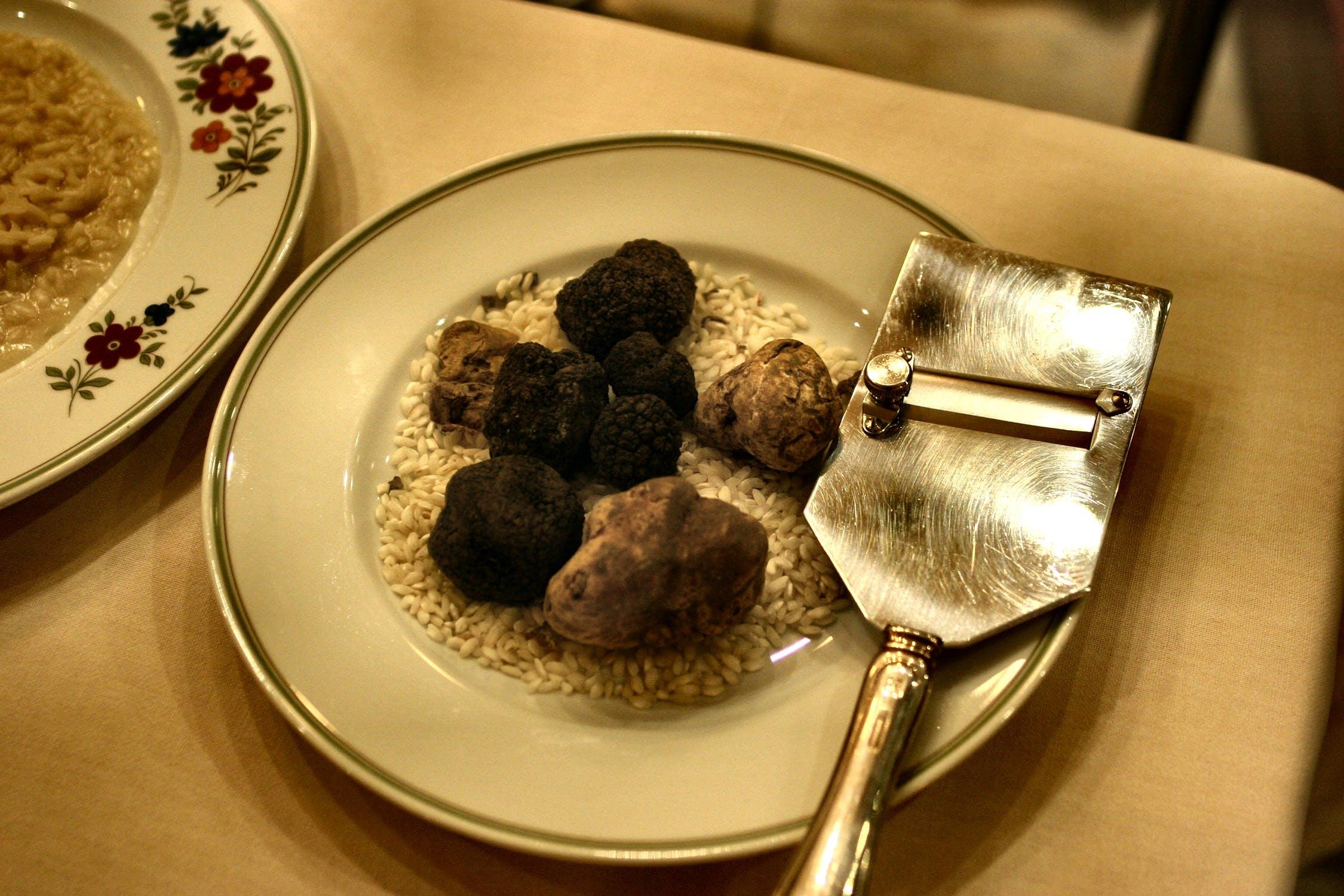 C'est la saison des truffes !